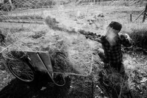 fotograf.stina .gronbech.organic.farm1  300x200 fotograf.stina.gronbech.organic.farm1