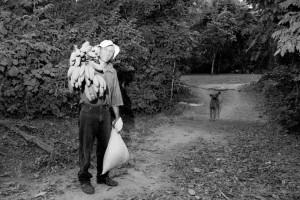 fotograf stina gronbech dokumentar bw bananer 300x200 fotograf stina gronbech dokumentar bw bananer